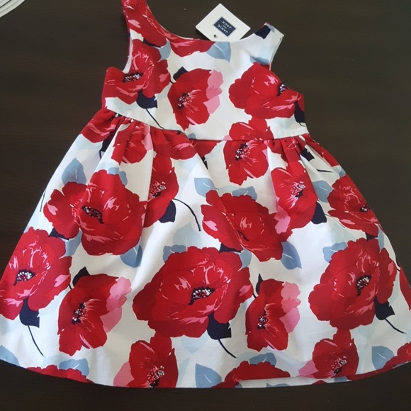 Janie and Jack Other - Janie and jack NWT red flowers dress Patriotic